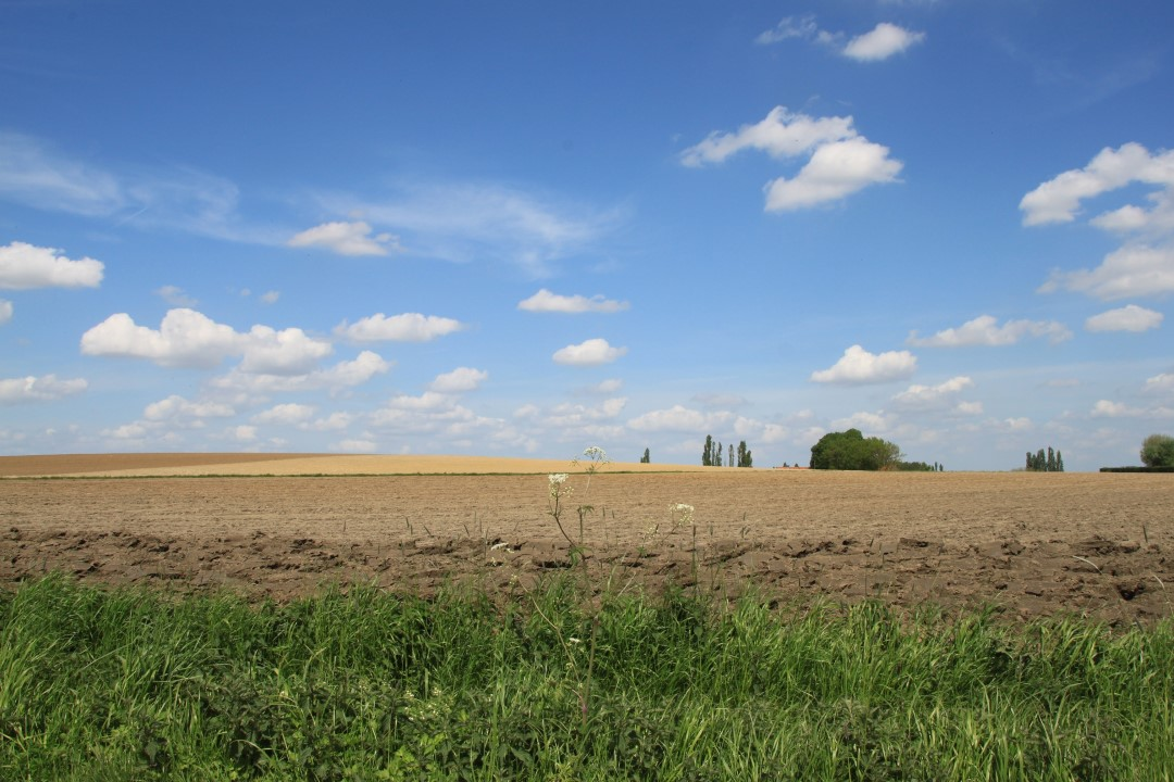 © Copyright - vlaanderen-fietsland.be - Vera Masschelein (Auteur)