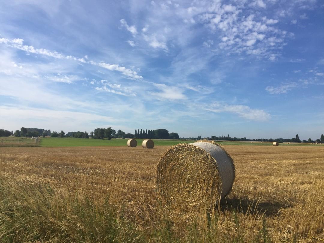 &copy Copyright - vlaanderen-fietsland.be - Bruno Fierens (Auteur)