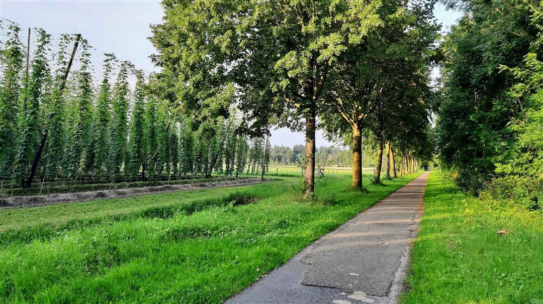 © Copyright - vlaanderen-fietsland.be - Louis Heylen (Auteur)