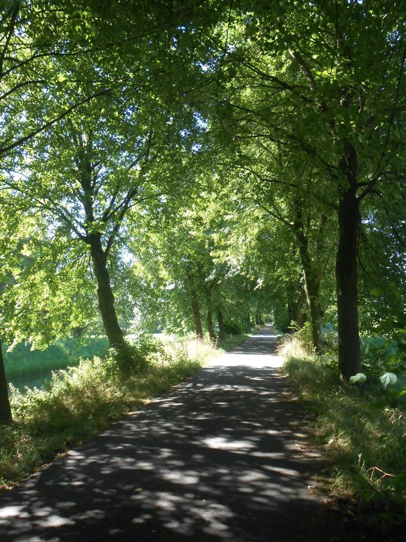 © Copyright - vlaanderen-fietsland.be - Sylvie Maes (Auteur)