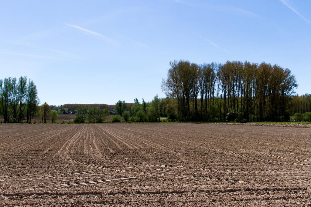 © Copyright - vlaanderen-fietsland.be - Luc Bauwens (Auteur)
