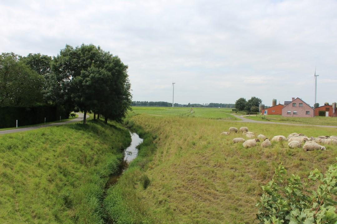 © Copyright - vlaanderen-fietsland.be - Koen Noens (Auteur)